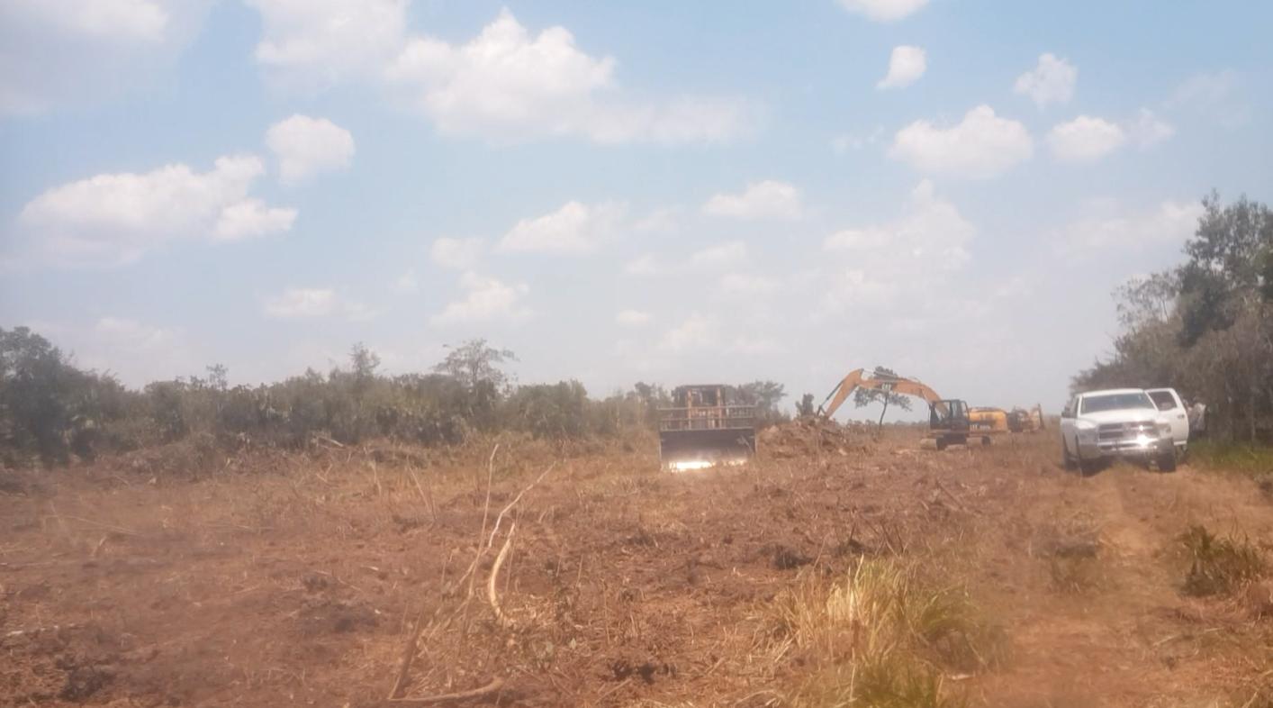 Multimillonario responsable de devastación de la selva de Palizada
